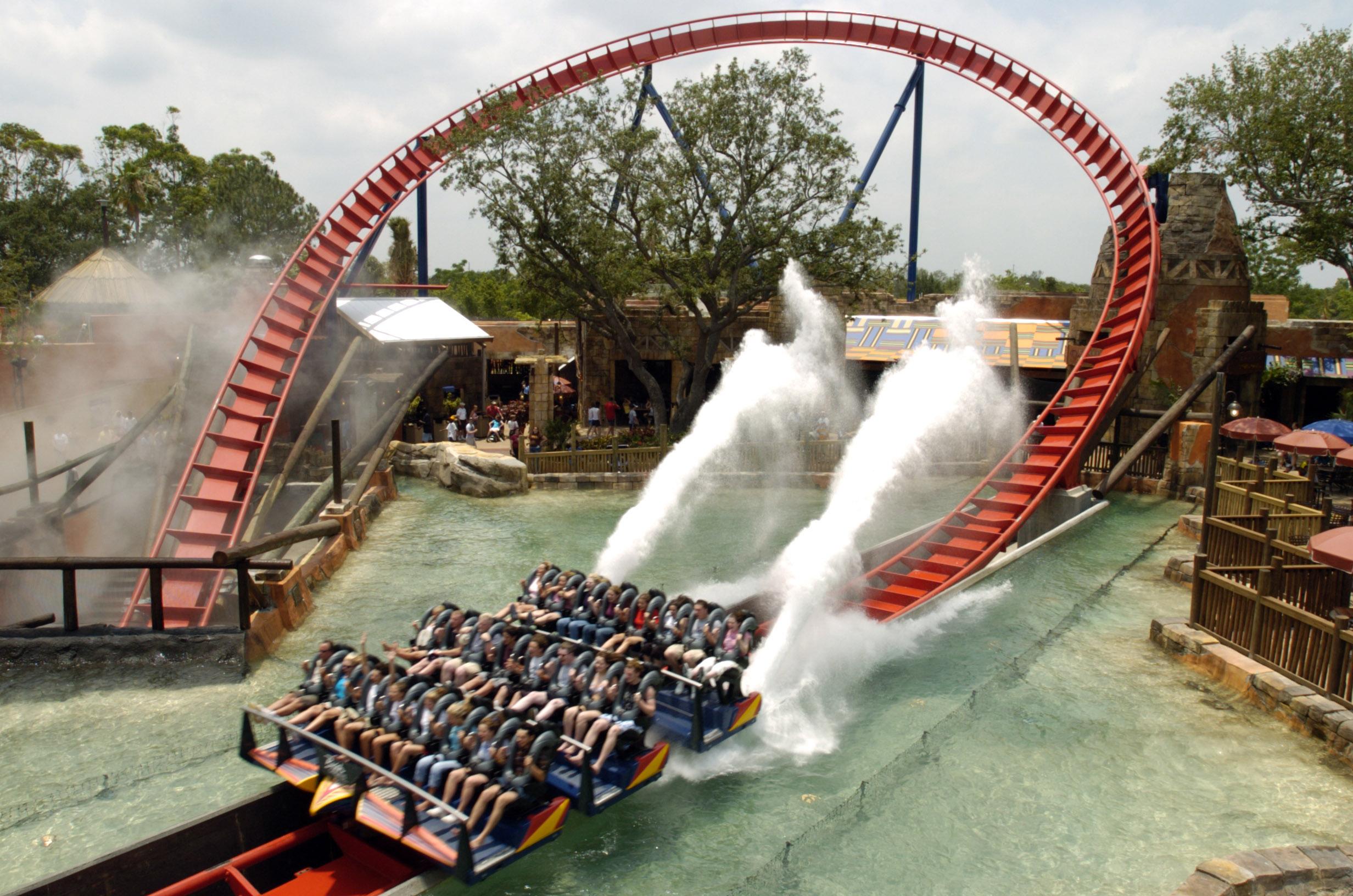 SheiKra Ride at Busch Gardens