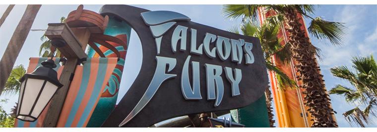 Falcons furty