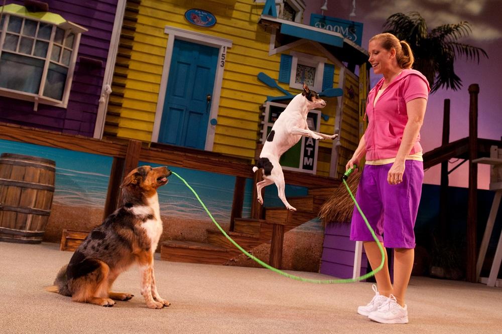 Skipping Dogs at Pets Ahoy