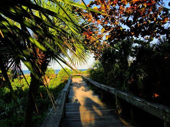 Lori Wilson Park Near Universal Orlando Resort