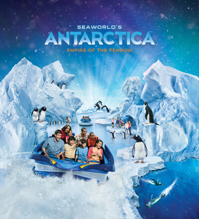 Win Champagne in our Antarctica Competition