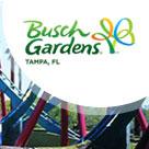 Busch Gardens Guide