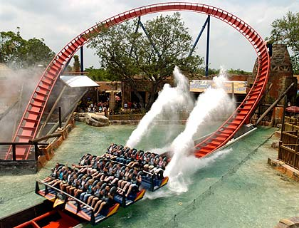 Guide to Busch Gardens Tampa