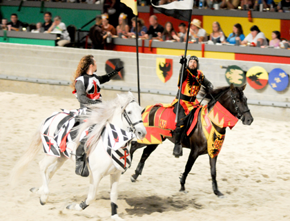 Horses and flags at the Medieval Times Orlando