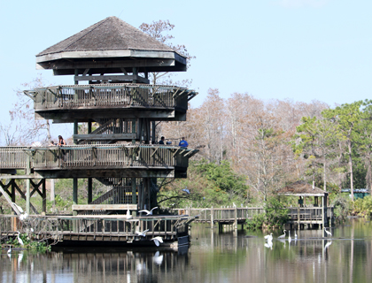 Tower at Gatorland Orlando