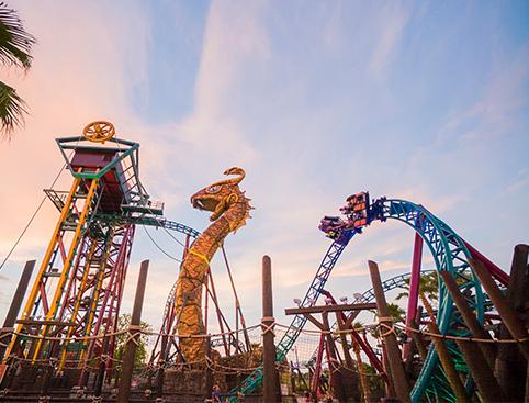 Sheikra Ride at Busch Gardens Tampa