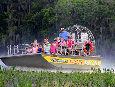 everglades-airboat-rides.jpg