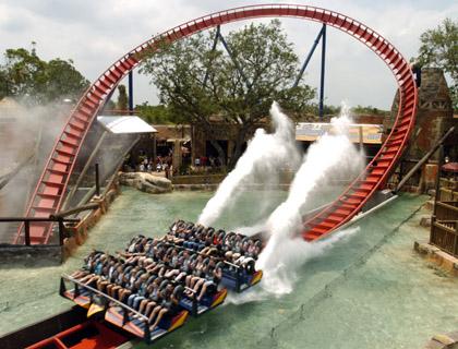 Sheikra Rollercoaster at Busch Gardens