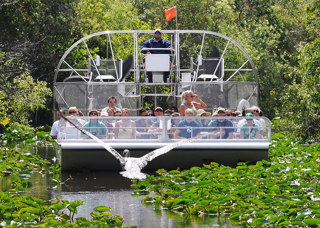 Everglades Airboat Adventure from Miami