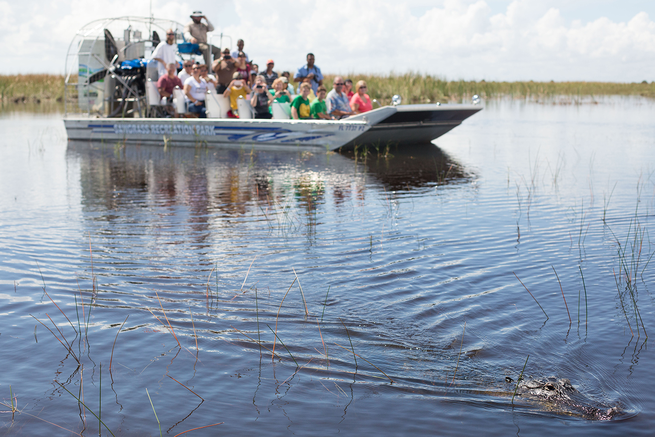Sawgrass Park Airboat Tour