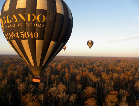 One hot air balloon up-close and two in the distance flying over trees in Orlando