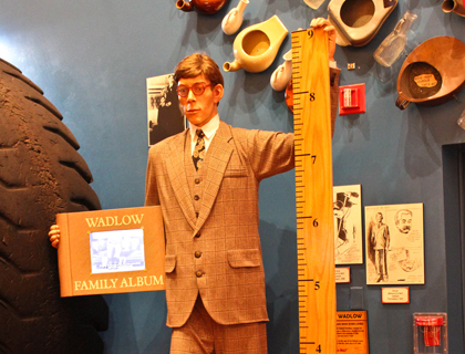Life-sized wax figure of the world's tallest man standing next to a metre while holding his family album