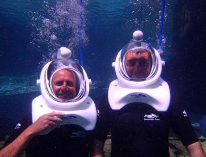 Underwater Photo SeaVenture