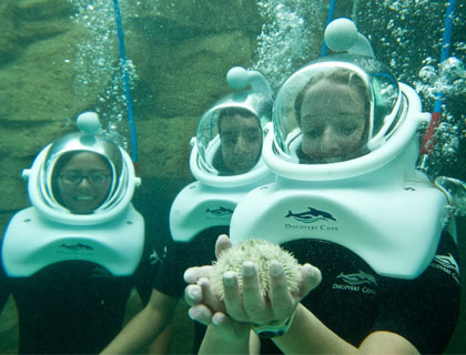 Friends enjoying underwater experience