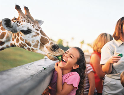Girl with Giraffe on Serengeti Safari